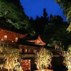 七夕笹飾りライトアップ/ 貴船神社