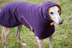 Dog Winter Coat with Drawstring Snood  Large Breeds by TreeParlor