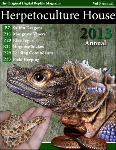 Herpetoculture House Digital Reptiles Magazine presents their 2013 Annual now available here! Sailfin Dragons, Mangrove Vipers, and More. Amphibians, Reptiles, House And Home Magazine, Infinity, Articles, Random, Animals, Infinite, Animales