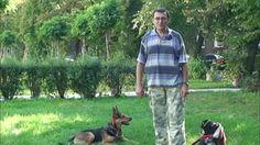 Pies Twój Przyjaciel - multimedialny kurs szkolenia psa klikerem