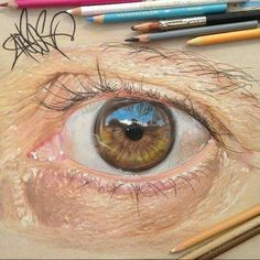 Amazing colored pencil work.