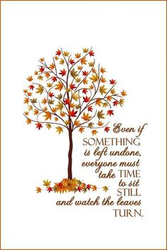 Even If Something Is Left Undone, Everyone Must Take Time To Sit Still And  Watch The Leaves Turn.