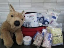 Walks 'N' Wags Pet First Aid Barks National Pet First Aid Awareness Month!