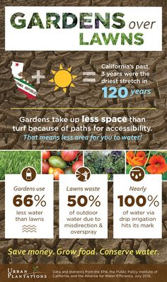 """Rodale's Organic Life says, """"lawn care is as much of a danger to our health and the environment as conventional agriculture is. Organic Gardening, Gardening Tips, Hay Bale Gardening, Low Growing Shrubs, Detox Your Home, Lawn Sprinklers, Home Vegetable Garden, Green Lawn, Garden Care"""
