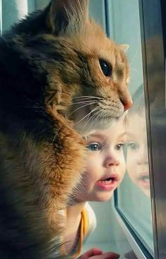 Child and pet cat #cat #cute