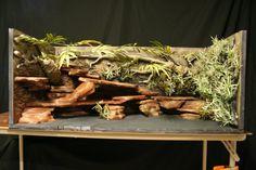 Custom Designed Enclosures for Vivariums within UK? - Reptile Forums - set up