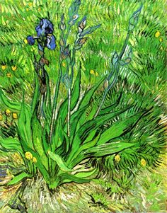 Vincent Van Gogh. The Iris (1889).