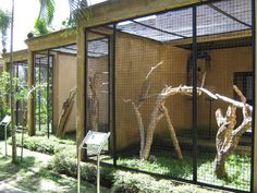 Image detail for -aviaries for larger macaws » Bali Bird Park & Rimba Reptile Park ...