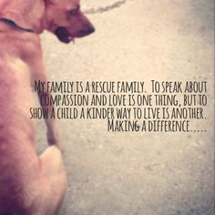 47 Ideas Dogs Rescue Quotes Shelters For 2019 Animal Rescue Quotes, Animal Quotes, Animal Adoption, Big Dogs, I Love Dogs, Puppy Love, Foster Dog, Crazy Dog Lady, Cat Quotes