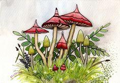 Reddish and light green mushrooms