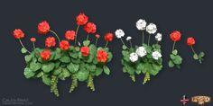 Flower_FINAL.jpg