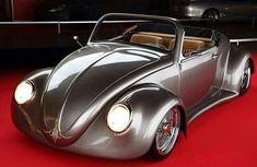 Wide body Bug