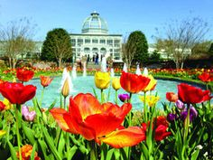 Bicycles and blooms at Lewis Ginter Botanical Garden's Heritage Weekend