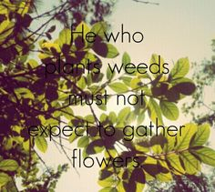 He who plants weeds must not expect to gather flowers.