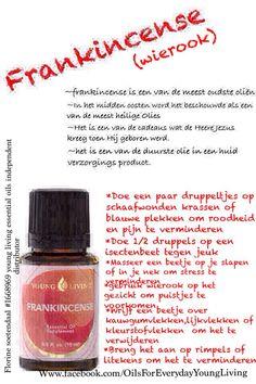 Frankincense Dutch informatie, young living oils voor elk lichamelijk probleem een oil. Frankincense een van de meest interessantste oliën.