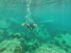 Snorkeling at Hin Wong Bay at Koh Tao, Thailand