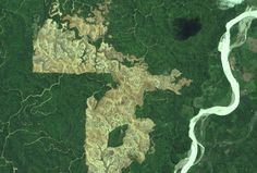 """Eye on the Tiger: Satellite Images a New Tool for Conservation. """"Maps are a common language, and satellite images are an unfiltered channel of information,"""" said Dmitry Aksenov, general director of Russia-based nonprofit Transparent World. """"With satellite monitoring, it's not possible to hide what you're doing on the ground—your dirty secrets of mining, logging, and pollution."""" These high resolution are available at: http://www.openlandscape.info/"""