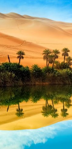 Oasis of peace. — with Tu Mera Humdard Hai. Trinidad, Desert Oasis, Tropical Landscaping, Landscape Prints, Deserts, Paradise, Africa, Poster, River
