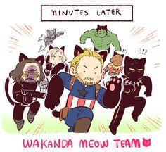 Avengers: Infinity War    Wakanda Meow Team - Part 3