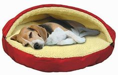 Round Pet Bed      Great deal .Check it out >>>>>   http://amzn.to/1qlaavW