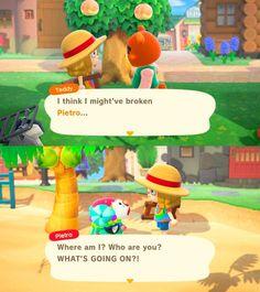 Animal Crossing Fan Art, Animal Crossing Guide, Animal Crossing Characters, Animal Crossing Villagers, Animal Crossing Humor, Funny Animals, Cute Animals, Gaming Memes, New Leaf