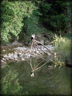 "installation ""l'arachnée du calavon"""