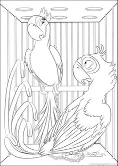 Angry Nigel parrot coloring pages for kids printable free  Rio