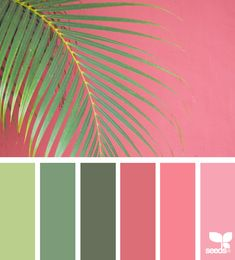 SUMMER { color frond } January 22 2018 #designseeds