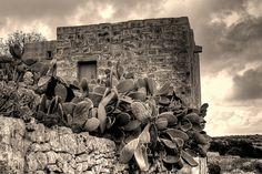 Farmer's ghorfa.  Imgiebah Valley, Mellieha, Malta by leslievella64, via Flickr
