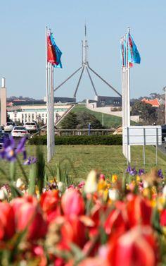 Spring in Canberra - Australia