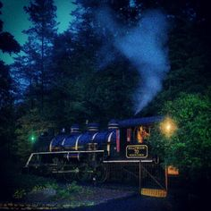 Dollywood Express during Dollywood Nights last season