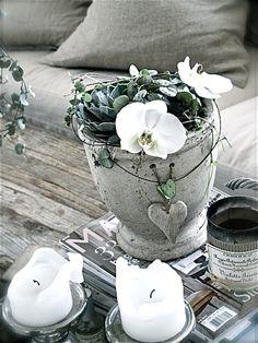 camilla-blogg-blomst-6.5.13-.jpg (580×773)