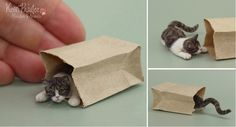 Dollhouse Miniature Peekaboo Cat - July 2013 by Pajutee