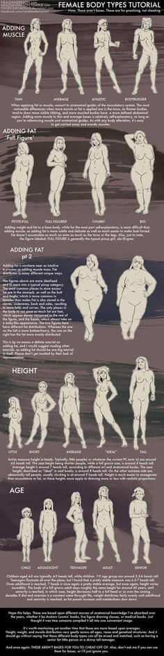 Female Body Types Drawing Tutorial by Phobos-Romulus - Different Age / Height / Stature - Woman - Drawing Reference Doodle Drawing, Body Drawing, Anatomy Drawing, Life Drawing, Figure Drawing, Drawing Reference, Human Anatomy, Body Reference, Anatomy Reference