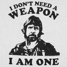 chuck norris quotes - Google Search