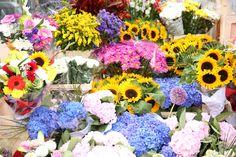 Flower market, Grafton Street, #Dublin #travelphoto @gotoirelandus