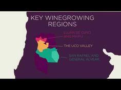 Discover Mendoza wines - VINOA - YouTube
