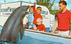 Ocean World - Fort Lauderdale - Florida