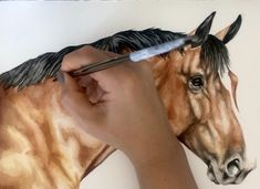 Acrylic Portrait Painting, Watercolor Painting Techniques, Watercolor Portraits, Watercolor Paintings, Watercolor Horse, Watercolor Animals, Horse Drawing Tutorial, Horse Illustration, Horse Drawings