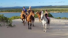 Beach horse riding near Jeffreys Bay, South Africa with Beach Horse Rides Papiesfontein. Sa Tourism, Surf Movies, River Mouth, Beach Rides, Point Break, Bungee Jumping, Deep Sea Fishing, Adventure Activities, Countries Of The World