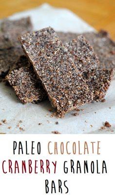 Paleo Chocolate Cranberry Bars