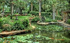 Exotic pond garden (1920x1200, pond, garden)  via www.allwallpaper.in