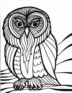 owl-bird-coloring-pages.gif (1000×1300)