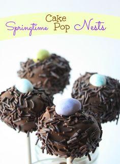 Springtime Cake Pop Nests by Munchkin Munchies.