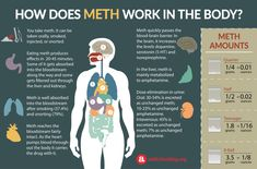 A look at the metabolism and effects of codeine on the body. Check out our infographic to learn the effects of codeine as a result of various modes of Meth Addiction, Nicotine Addiction, Addiction Recovery, Nicotine Withdrawal, Nursing Programs, Neurotransmitters, Boost Metabolism, Nursing, Ganja