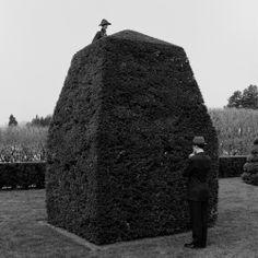 Rodney Smith (American, b. 1947) - Question Mark Picture, Longwood Gardens Pennsylvania, 1997 Photography, B/W