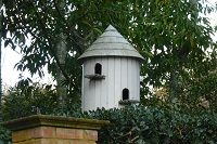 What birds could live in this birdhouse?