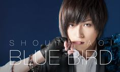 Aoi Shouta The Real World, Blue Bird, Anime Characters, Handsome, Singer, Actors, Faces, Beauty, Singers