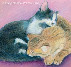 Two sleeping cuddling kittens or cats curled up by CaryeVDPMahoney
