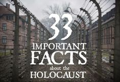 Articles, crafts, recipes, and books about the Jewish culture. Study History, History Facts, World History, Facts About The Holocaust, Facts About Ww2, Wierd Facts, Crazy Facts, Ww2 Facts, Ww2 Photos